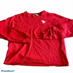 Abercrombie Kids Cropped Spellout Sweatshirt Red